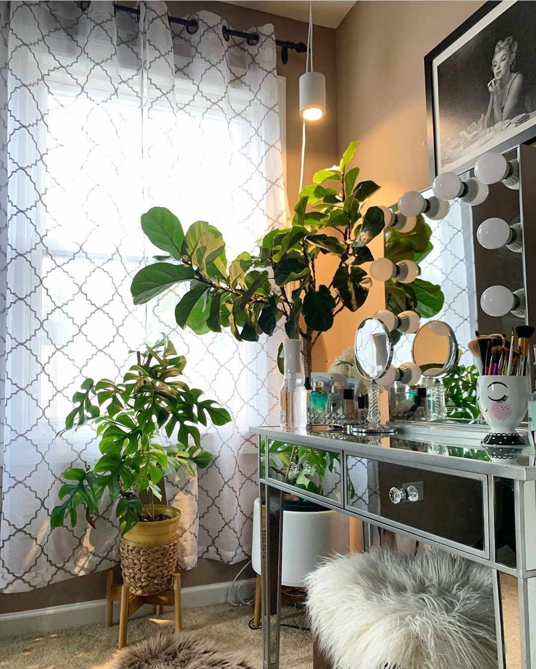 Small White Aspect™ Grow Light over a Fiddle Leaf Fig