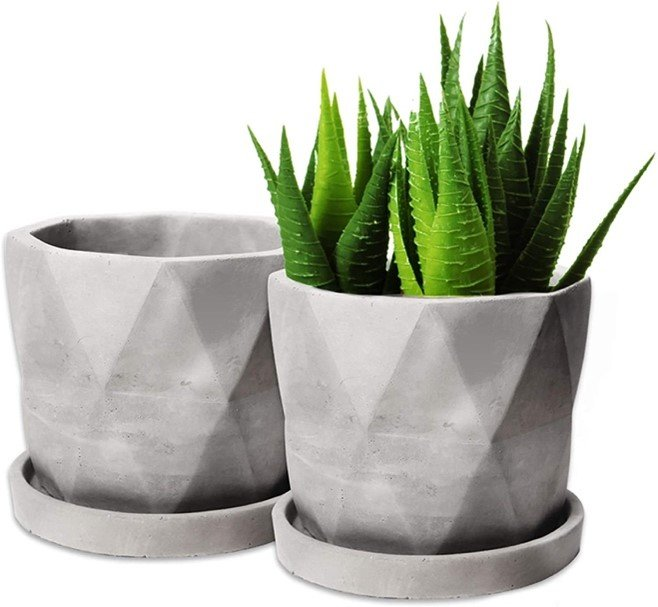 Top 10 Eco Friendly Plant Pots