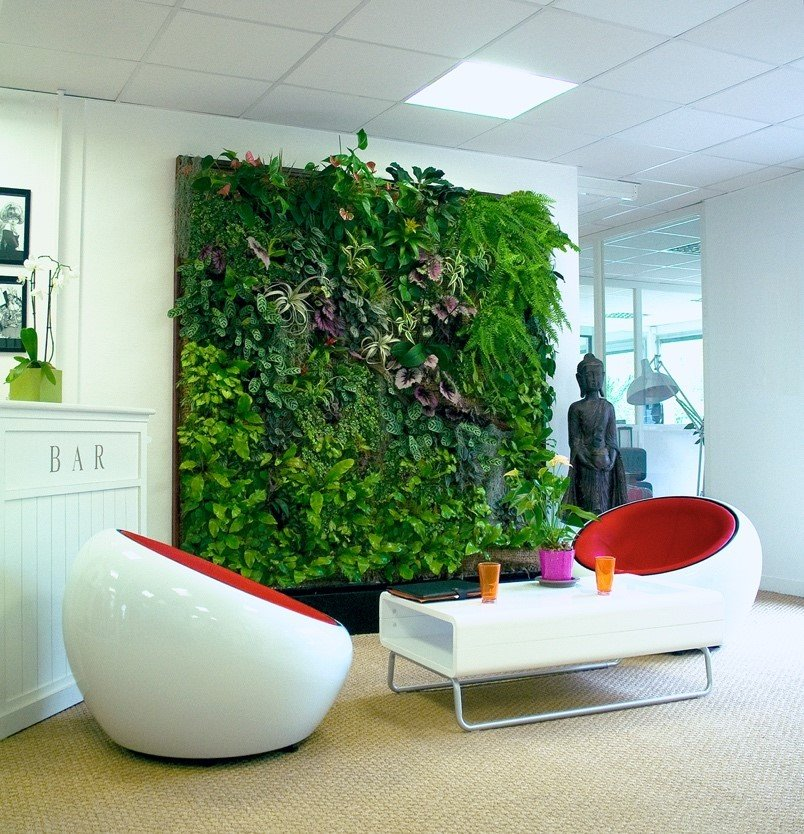 Pros and Cons of Indoor Plant Walls
