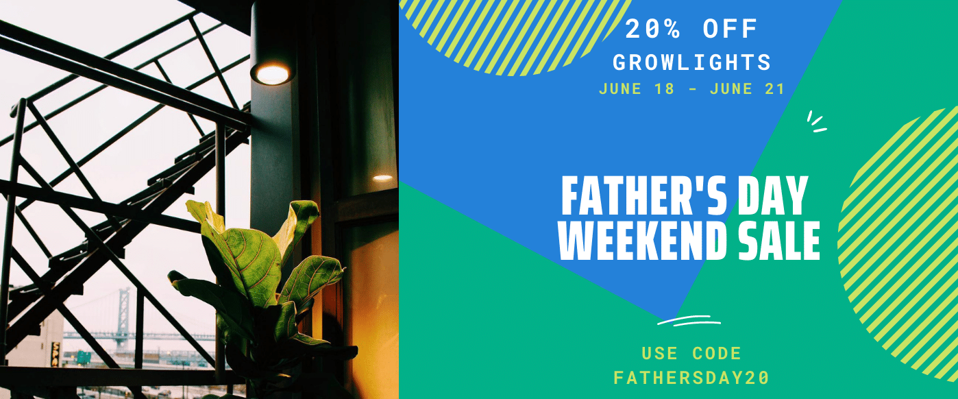 Funky Father's Day Weekend Sale 20% off