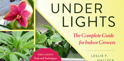 Growing-Under-Lights-Cover[1]